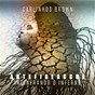 Album Artefireaccua (incinerando o inferno) de Carlinhos Brown