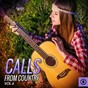 Compilation Calls from country, vol. 4 avec Pee Wee King & His Golden West Cowboys / Carl Belew / Bob Gallion / Carl Smith / Tom Glazer