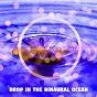 Album Drop in the binaural ocean de Binaural Beats / Binaural Beats Brain Waves Isochronic Tones Brain Wave Entrainment / Binaural Beats Sleep