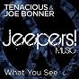 Album What you see de Joe Bonner / Tenacious