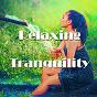 Album Relaxing tranquility de Spa Music Paradise / Spa Relaxation / Relaxing Spa Music