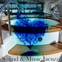 Album Sound & music jacuzzi de Serenity Spa Music Relaxation / Spa Relaxation & Spa / Rainfall
