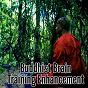 Album Buddhist Brain Training Enhancement de Zen Meditation & Natural White Noise & New Age Deep Massage, Meditation, Zen Meditate