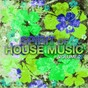 Compilation Spirit of house music, vol. 2 avec Alexsander / Luthier / Steffen Baumann, Stefan Hollaender / Fisher, Fiebak / Disco Sluts...