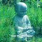 Album Wild state of mind de Asian Zen Spa Music Meditation
