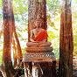 Album Grow your mind de Asian Zen Spa Music Meditation