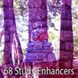 Album 68 Study Enhancers de Music for Reading