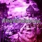 Album 43 white noise meditation auras de Asian Zen Spa Music Meditation
