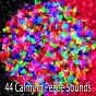 Album 44 calming peace sounds de Asian Zen Spa Music Meditation