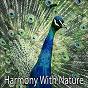 Album Harmony with nature de Guided Meditation