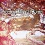 Album Freedom through storms de Rain Sounds Nature Collection