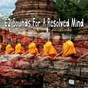 Album 62 sounds for a resolved mind de Yoga Tribe