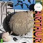 Album Woof woof de Arthur