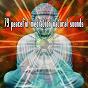 Album 79 peaceful mediation natural sounds de White Noise Research