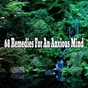 Album 68 remedies for an anxious mind de Ambiente