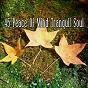 Album 45 peace of mind tranquil soul de Asian Zen Spa Music Meditation