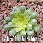 Album 64 auras that aid meditation de Meditation Zen Master