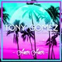 Album Amor amor (feat. ragga ranks) de Tony Gomez