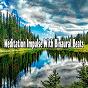Album Meditation Impulse with Binaural Beats de Binaural Beats