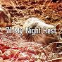 Album 71 my night rest de White Noise Babies