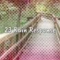 Album 23 Rain Response de Rain Sounds & White Noise