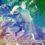 Album 48 just soothing sounds de Sleep Sounds of Nature