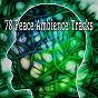Album 78 peace ambience tracks de Entspannungsmusik