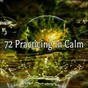Album 72 practicing in calm de Brain Study Music Guys