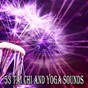 Album 53 tai chi and yoga sounds de Massage Tribe
