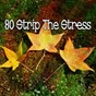 Album 80 strip the stress de Forest Sounds