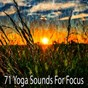 Album 71 yoga sounds for focus de Music for Deep Meditation