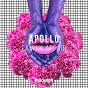 Album Family affair de Apollo