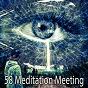 Album 58 meditation meeting de Massage Therapy Music