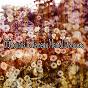 Album 65 sounds to remedy mental discourse de Massage Therapy Music
