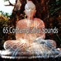 Album 65 contemplative sounds de Asian Zen Spa Music Meditation