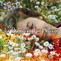 Album 45 respect for sleep de Rockabye Lullaby