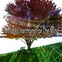 Album 70 tracks harmony for the mind de Lullabies for Deep Meditation