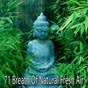Album 71 breath of natural fresh air de Zen Music Garden