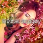 Album 60 sunset sanctuary de Ocean Waves for Sleep