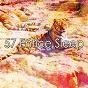 Album 57 entice sleep de Bedtime Baby