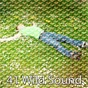 Album 41 wild sound de Natural White Noise for Babies