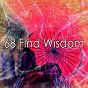 Album 68 find wisdom de White Noise Meditation