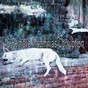 Album 46 remove insomnias corruption de Ocean Sounds Collection