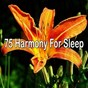 Album 75 harmony for sleep de Trouble Sleeping Music Universe