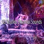 Album 60 bottled essential sounds de Spa Relaxation