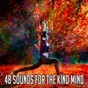 Album 48 sounds for the kind mind de Meditation Zen Master