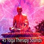 Album 45 yoga therapy sounds de Asian Zen Spa Music Meditation