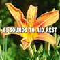 Compilation 61 sounds to aid rest avec Sleepy Sounds