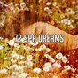 Compilation 72 spa dreams avec Ocean Waves for Sleep
