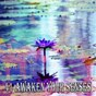Album 41 awaken your senses de Meditation